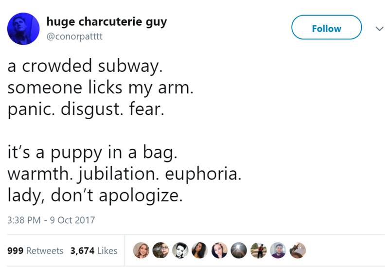 Text - huge charcuterie guy Follow @conorpatttt a crowded subway. someone licks my arm. panic. disgust. fear. it's a puppy in a bag. warmth.jubilation. euphoria. lady, don't apologize. 3:38 PM - 9 Oct 2017 999 Retweets 3,674 Likes
