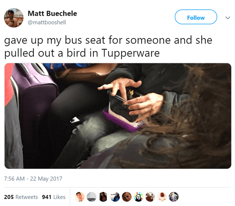 Product - Matt Buechele @mattbooshell Follow L gave up my bus seat for someone and she pulled out a bird in Tupperware 7:56 AM - 22 May 2017 205 Retweets 941 Likes