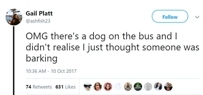 Text - Gail Platt Follow @ashfish23 OMG there's a dog on the bus and I didn't realise I just thought someone was barking 10:36 AM - 10 Oct 2017 74 Retweets 631 Likes EUT
