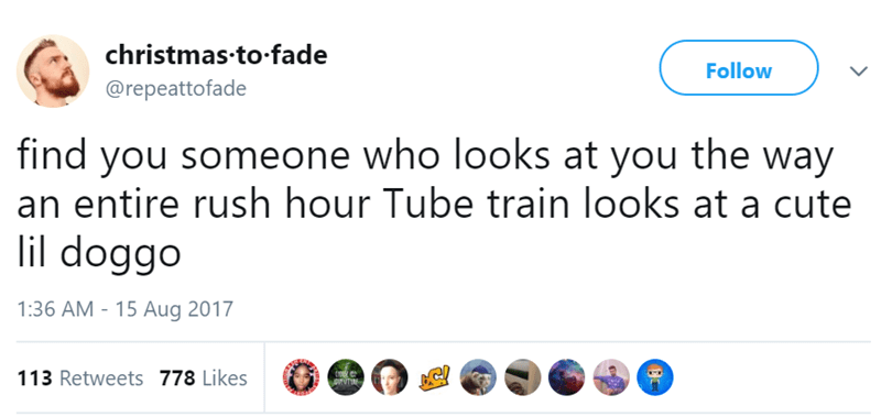 Text - christmas to-fade Follow @repeattofade find you someone who looks at you the way an entire rush hour Tube train looks at a cute lil doggo 1:36 AM - 15 Aug 2017 113 Retweets 778 Likes ET