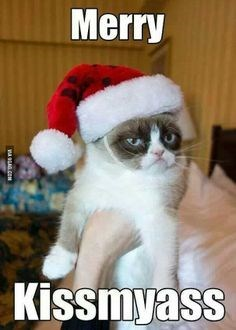 grumpy cat wearing a Santa hat and not caring about Christmas