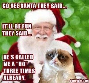"grumpy cat on santa calling him ""ho"" three times"