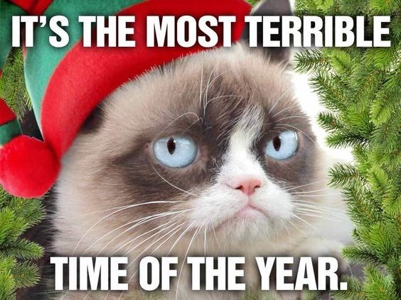 grumpy cat hates Christmas while wearing a Christmas hat