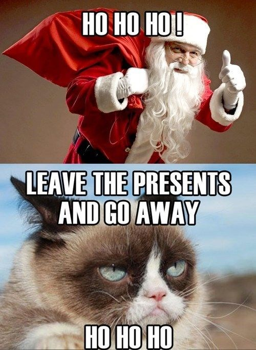 grumpy cat only wanting the presents during christmas and nothing else