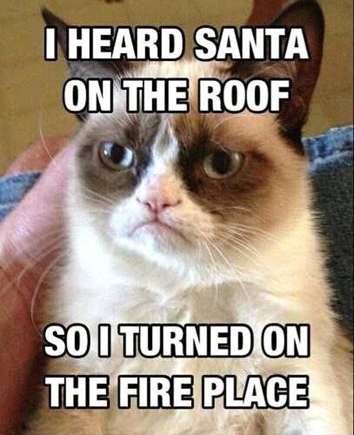 grumpy cat turned on the fire to get santa away from the house