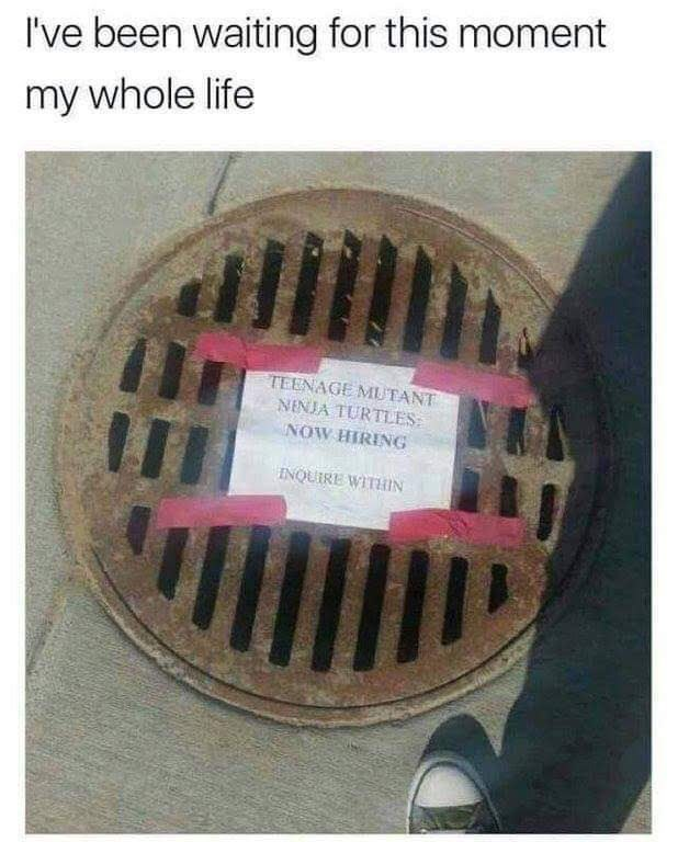 manhole with a sign that says Ninja Turtles are hiring