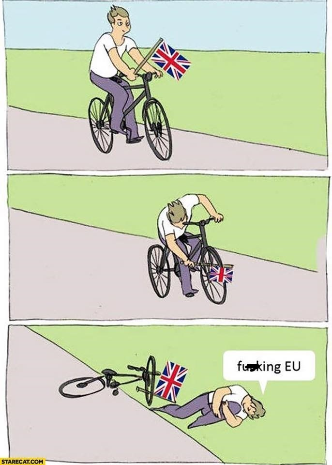 brexit meme about falling of a bike and blaming the EU