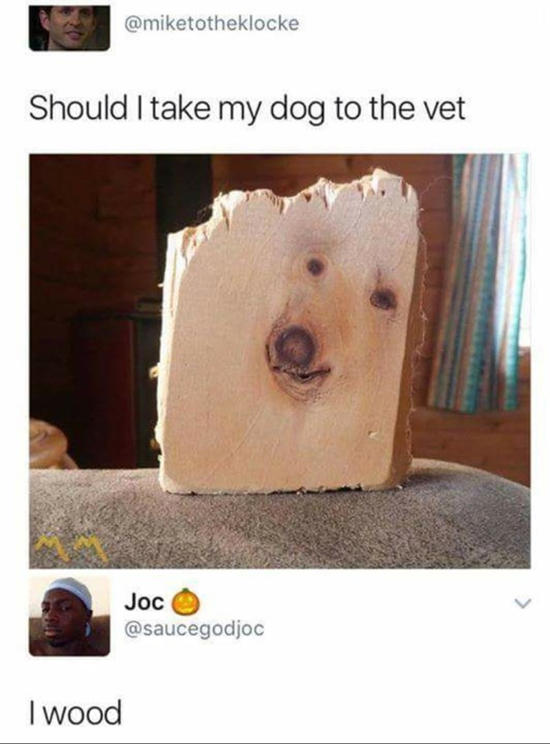 pic of a piece of wood that has a shape of a dog on it