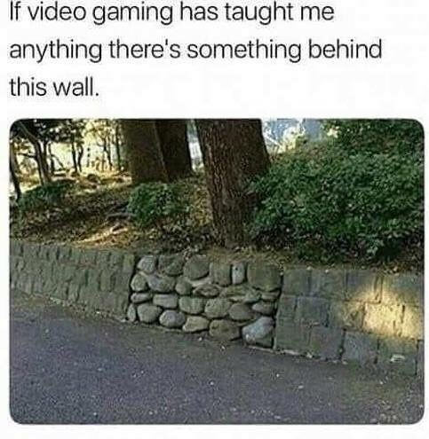 meme of a wall that is filled with different kinds of bricks similar to a feature in a video game