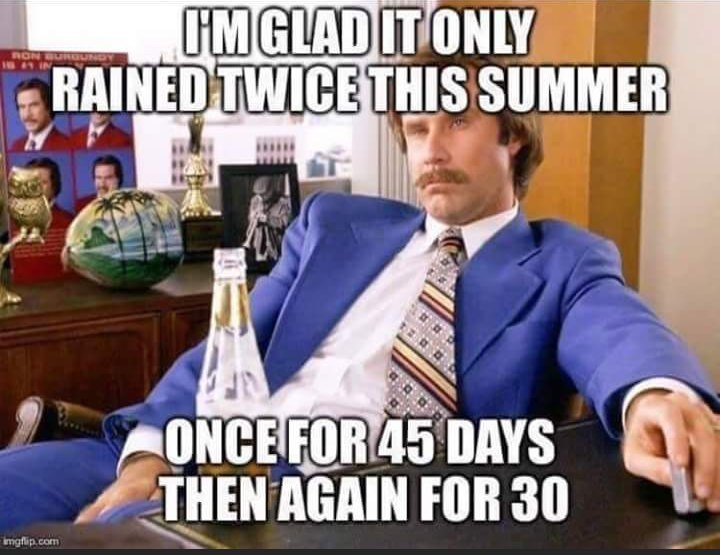 anchorman meme with Will Ferrell on the weather
