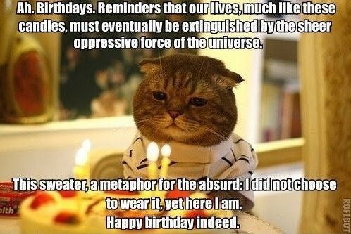 birthday meme of a cat looking very sad while sitting in front of a lit birthday cake