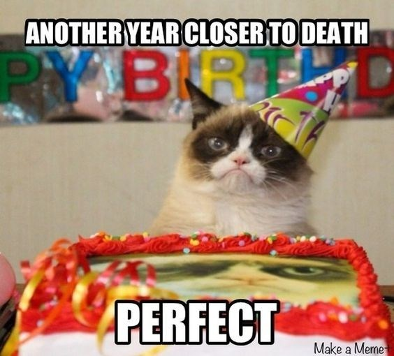 grumpy cat birthday meme disappointed about his birthday