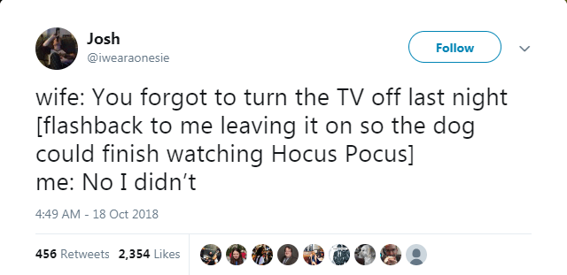 Text - Josh Follow @iwearaonesie wife: You forgot to turn the TV off last night [flashback to me leaving it on so the dog could finish watching Hocus Pocus] me: No I didn't 4:49 AM - 18 Oct 2018 456 Retweets 2,354 Likes