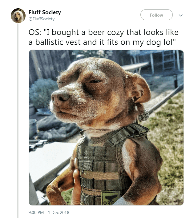 "Dog - Fluff Society Follow @FluffSociety OS: ""I bought a beer cozy that looks like a ballistic vest and it fits on my dog lol"" 9:00 PM-1 Dec 2018"