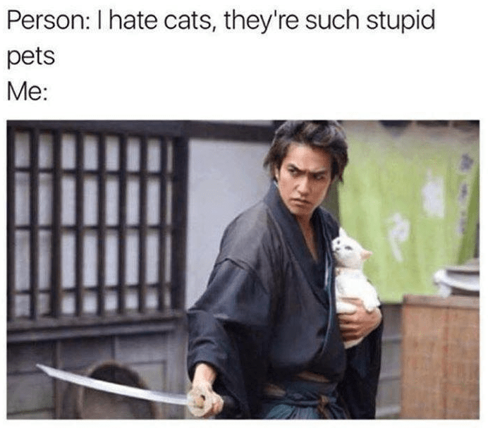 Product - Person: I hate cats, they're such stupid pets Me: