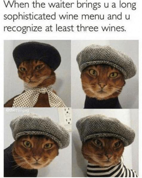 Headgear - When the waiter brings u a long sophisticated wine menu and u recognize at least three wines. Qthezenpig