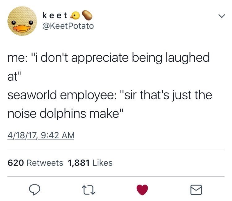 "meme - Text - keet @KeetPotato me: ""i don't appreciate being laughed at"" seaworld employee: ""sir that's just the noise dolphins make"" 4/18/17 9:42 AM 620 Retweets 1,881 Likes"