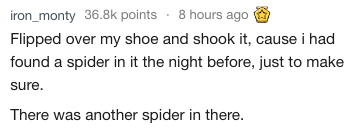 Text - iron_monty 36.8k points 8 hours ago Flipped over my shoe and shook it, cause i had found a spider in it the night before, just to make sure There was another spider in there.