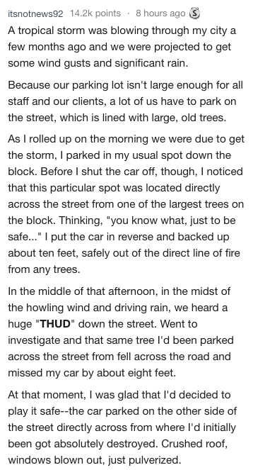 Text - itsnotnews92 14.2k points 8 hours ago A tropical storm was blowing through my city а few months ago and we were projected to get some wind gusts and significant rain. Because our parking lot isn't large enough for all staff and our clients, a lot of us have to park on the street, which is lined with large, old trees. As I rolled up on the morning we were due to get the storm, I parked in my usual spot down the block. Before I shut the car off, though, I noticed that this particular spot w
