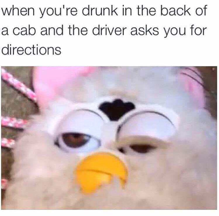 """Caption that reads, """"When you're drunk in the back of a cab and the driver asks you for directions"""" above a pic of a Furby with one eye open and the other half-closed"""
