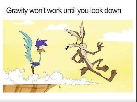 pic of Wile E Coyote running off the edge of a cliff and staying in the air until he looks down