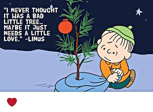 """scene from """"A Charlie Brown Christmas"""" with pic of Linus showing love to a tree"""