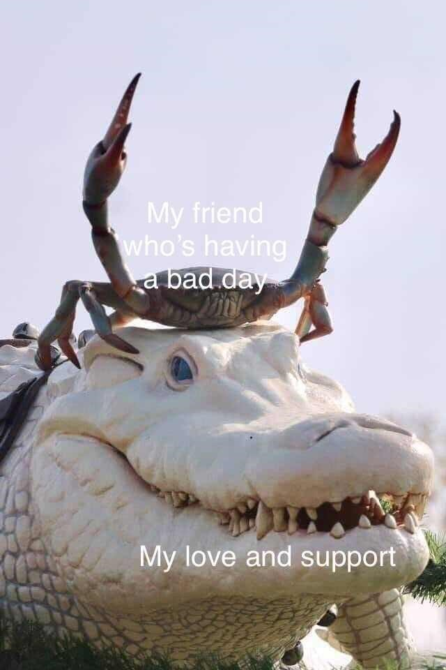 wholesome meme about supporting your friends with pic of crab riding an alligator's head