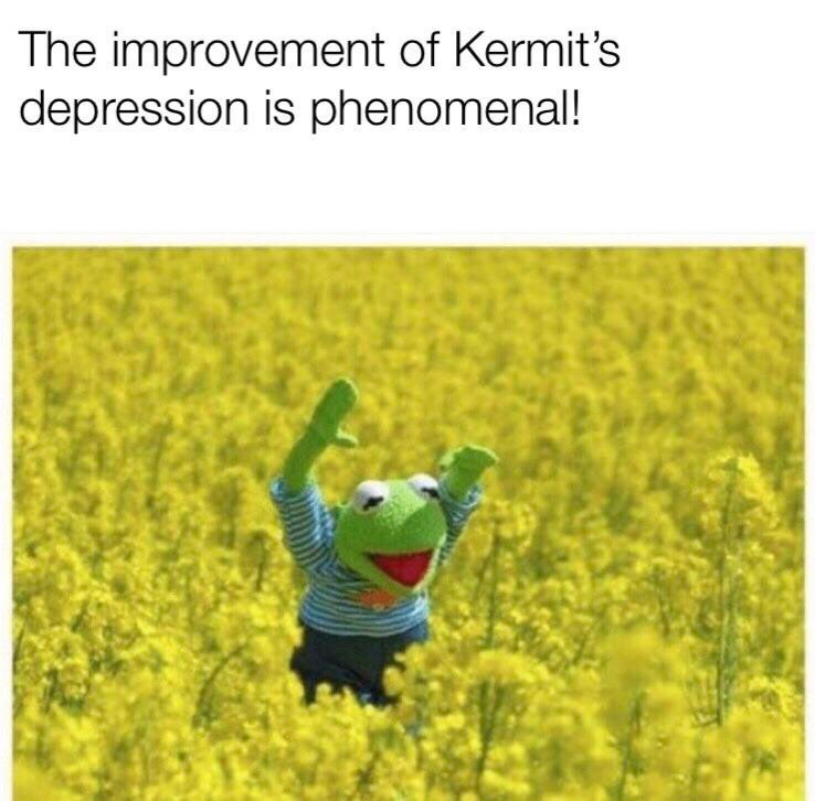 Kermit the frog meme standing in the middle of a field filled with flowers while smiling