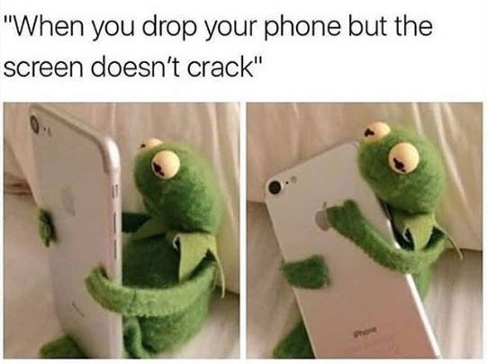Kermit the frog meme hugging an iphone after it dropped