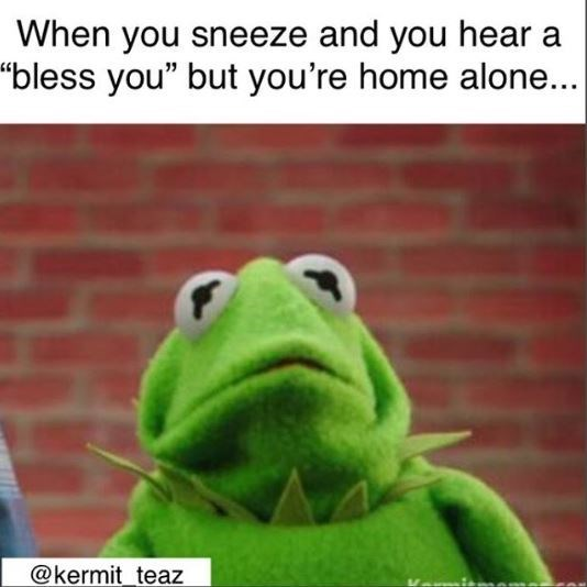 "Caption that reads, ""When you sneeze and you hear a 'bless you' but you're home alone..."" above a pic of Kermit looking scared"