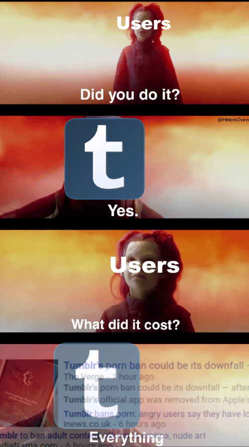 Gamora confronting Thanos meme representing Tumblr users asking about the porn ban
