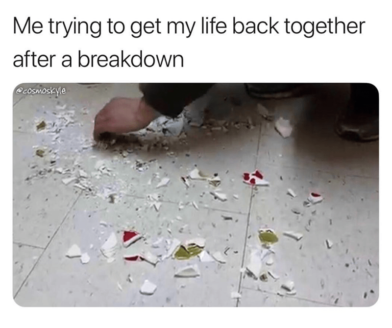 Text - Me trying to get my life back together after a breakdown Ocosmoskyle