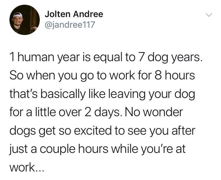 Text - Jolten Andree @jandree117 1 human year is equal to 7 dog years. So when you go to work for 8 hours that's basically like leaving your dog for a little over 2 days. No wonder dogs get so excited to see you after just a couple hours while you're at work...