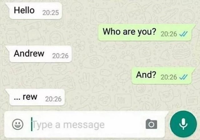 stupid but correct - Text - Hello 20:25 Who are you? 20:26 Andrew 20:26 And? 20:26 ...rew 20:26 Type a message