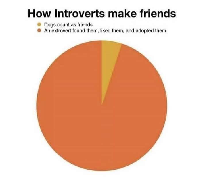 pie chart explaining introverts build friendships