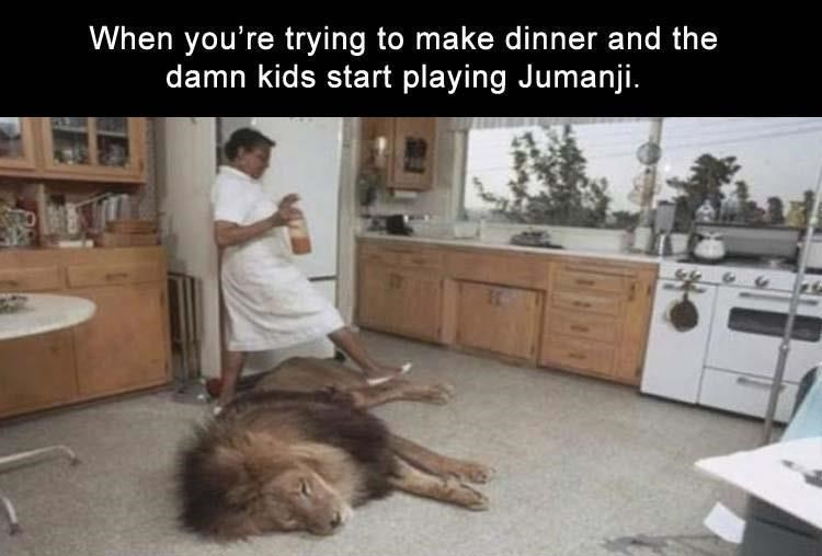 Meme about the movie Jumanji with pic of woman stepping over a lion sleeping in the kitchen