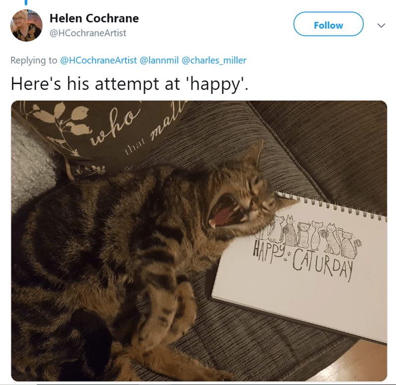 cat tweet - Cat - Helen Cochrane @HCochraneArtist Follow Replying to @HCochraneArtist @lannmil @charles_miller Here's his attempt at 'happy'. ha that mall HAPPY: CATURDAY