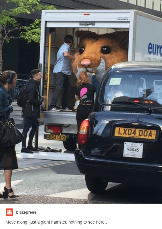 Vehicle - inoress eur Crew LX04 DOA GUG4 CUD 93045 BLAZE PRESSblazepress Move along, just a giant hamster, nothing to see here...