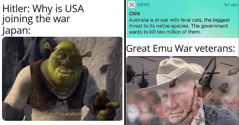 Funny memes about history | Meme of Shrek as Japan, saying GOOD Question when Hitler suggested to them to join the war | Meme about how Australia wants to go to war with ferral cats and eradicate them and a flashback trauma PTSD overlay of the Emu's from the Emu war, implying that Australia will not succeed in the cat war