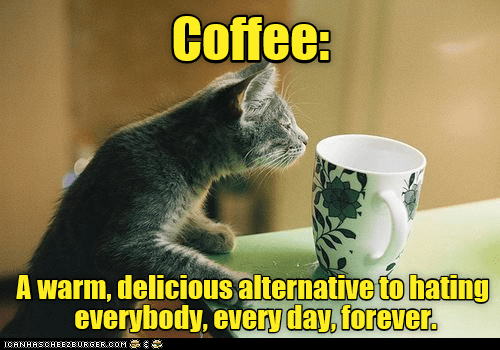 cat meme - Photo caption - Coffee: A warm, delicious alternative to hating everybody, every day, forever. ICANHASOHEEBUR GER COM