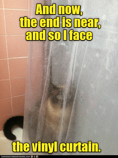 cat meme - Photo caption - And now, the end is near, and sol face the vinyl curtain. ICANAASCHEEZERGER.COM