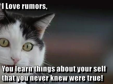 cat meme - Cat - I Love rumors, You learn things about your self thatyou never knew were true!