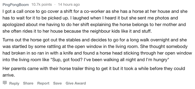 askreddit - Text - PingPongBoom 10.7k points 14 hours ago I got a call once to go cover a shift for a co-worker as she has a horse at her house and she has to wait for it to be picked up. I laughed when I heard it but she sent me photos and apologized about me having to do her shift explaining the horse belongs to her mother and she often rides it to her house because the neighbour kids like it and stuff