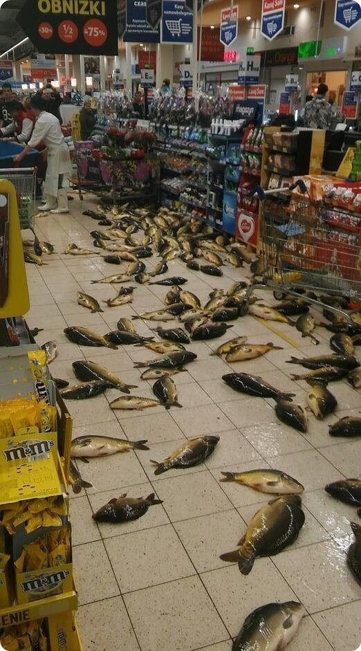 Pic of a supermarket with a bunch of fish all over the floor