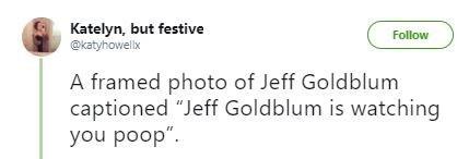 "Tweet that reads, ""A framed photo of Jeff Goldblum captioned 'Jeff Goldblum is watching you poop"""