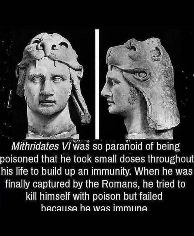 bad timing memes about Mithridates being immune to poison so when he was captured he could not kill himself
