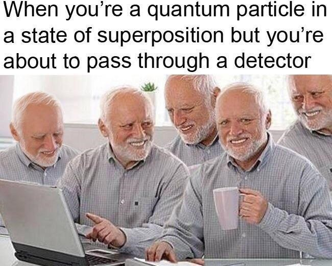 "Caption that reads, ""When you're a quantum particle in a state of superposition but you're about to pass through a detector"" above a pic of five Hide-the-Pain Harolds in the same pic"