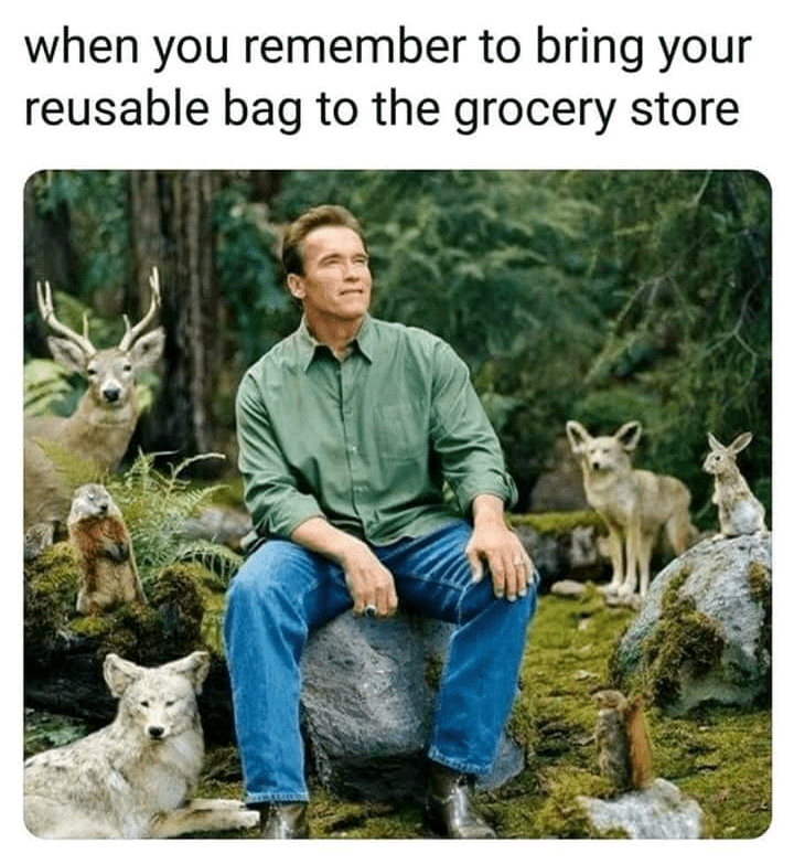 meme about feeling one with nature with pic of Arnold Schwarzenegger surrounded by woodland creatures