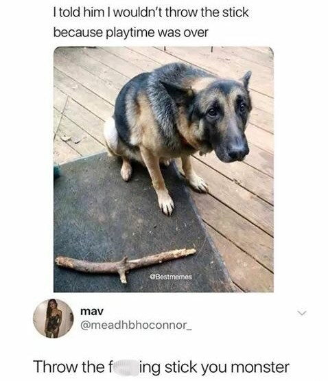 post of a dog looking sad that his owner doesn't want to play with him
