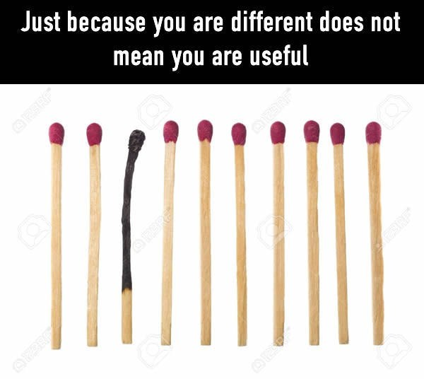 meme about one match that is almost completely burned and comparing it to people being different